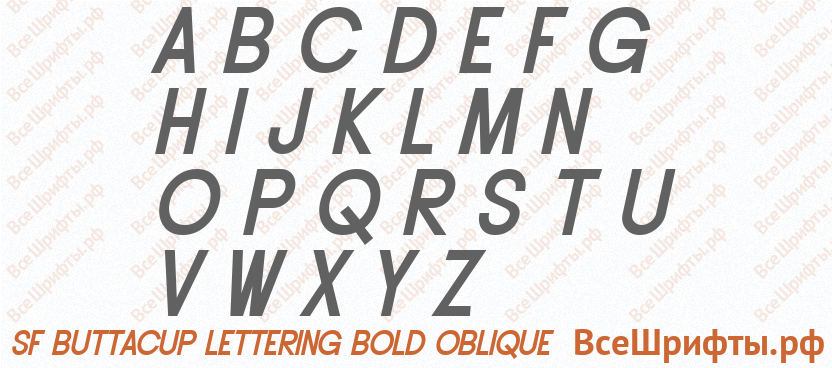 Шрифт SF Buttacup Lettering Bold Oblique с латинскими буквами